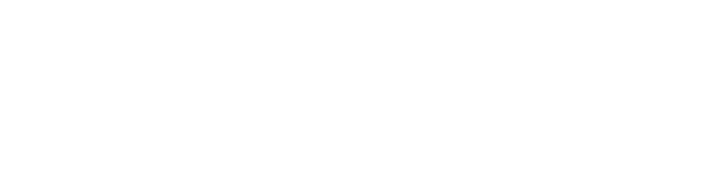 State Wide Insurance